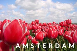 amsterdam-slide-viajandopor